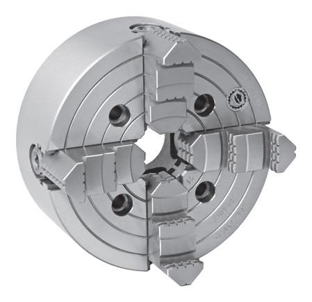 Planscheibe DIN 55026 Bison Typ 4314-250-5